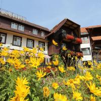 Hotel Hochfirst, hotel in Lenzkirch