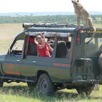 Fig Tree Camp - Maasai Mara, hotel in Talek