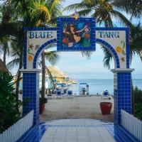 Blue Tang Inn, hotel in San Pedro