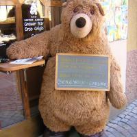 Hotel Grauer Bär, hotell i Brixen