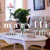 Amaryllis Boutique Guest House, hotel in Ano Pedina