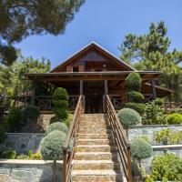 Ricky Chalet Near Troodos, hotel in Spilia