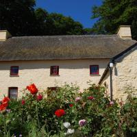 Treberfedd Farm Cottages and Cabins
