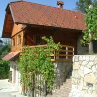 Zidanca med Vinogradi, hotel in Otočec
