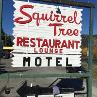 Squirrel Tree Resort