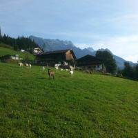 Bauernhof Waldangergut