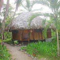 Sun Creek Lodge, hotel in Punta Gorda