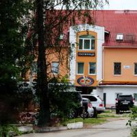 VIP Hotel, hotel in Klin