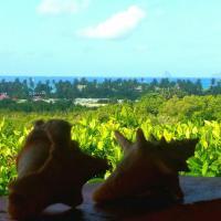 Studios Carribean Sea View