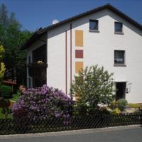 Ferienwohnungen und Gästezimmer Herrmann, Hotel in Steinbach am Wald