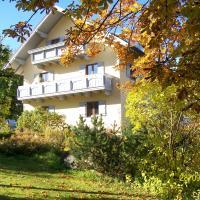 Maier Pension, hotel in Bayerisch Eisenstein