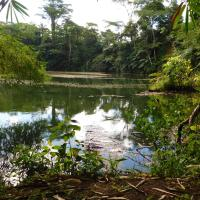 Colo-I-Suva Rainforest Eco Resort, отель в Суве