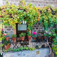 Renaissance Boutique House, hotell i Ronciglione