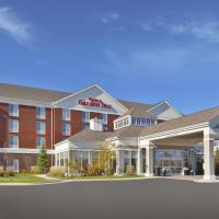 Hilton Garden Inn Detroit/Novi, hotel in Novi