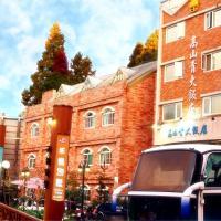 高山青大飯店,中正村/里/區的飯店
