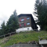 Montalin (452 Ti) 2. Stock