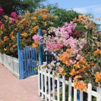 El Jardín de Playas, hotel em Playas