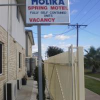 Molika Springs Motel, отель в городе Мори