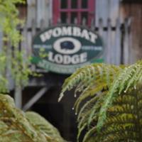 The Wombat Lodge