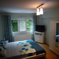 Apartament cu doua camere Slanic Moldova