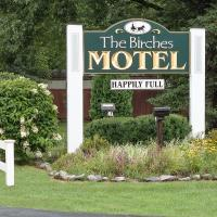 Birches Motel, hotel in Saratoga Springs