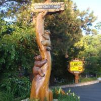 Giant Oaks Lodge, hotel in Running Springs