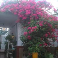 Casa Huespedes Lolita