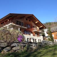 Ferienwohnung Ichtys, hotel in Hasliberg