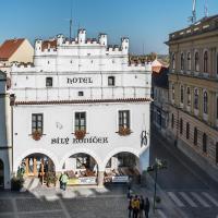 Hotel Bílý Koníček, hotel v destinaci Třeboň