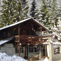 Chalet vue Mont-Blanc, hotel in Chamonix