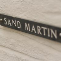 Sand Martin