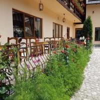 Pension Steaua Ariesului, hotel in Albac