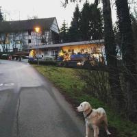 Guesthouse Nackermühle, hotel in Lottstetten