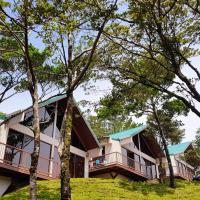 Green Forest Rustic Houses