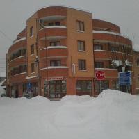 Gelov Hotel, hotel Berkovicában
