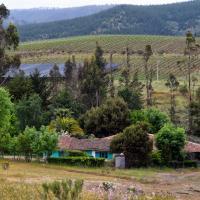 Casa Azul de San Pancho