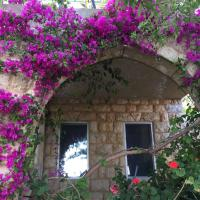 Old Souk Guest House, hotel in Jounieh