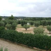 Agriturismo Green Park, hotell i Martina Franca