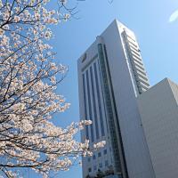 Hotel Nikko Kochi Asahi Royal, hotel in Kochi