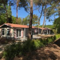 Chalet Forest