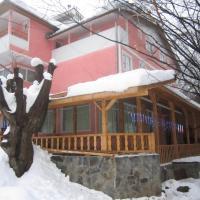 Complex Turistic Alessia, hotel in Lupeni