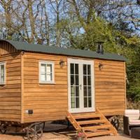 Luxury Shepherds Hut, hotel in Bransgore