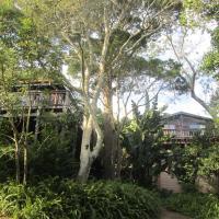 Treehouse Cottage