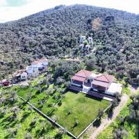 格拉橄欖樹林酒店(埃拉納斯奇斯赫拉斯)