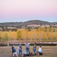 Peppertree Hill, hotel in Mudgee