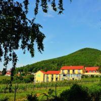 Wohlfühlhotel Alte Rebschule, Hotel in Rhodt unter Rietburg