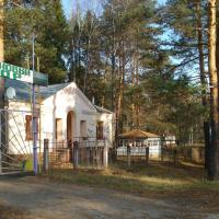 База отдыха Сосновый бор, отель в Богородске