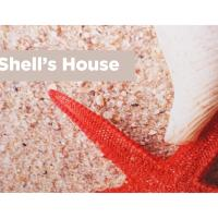 Shell's House