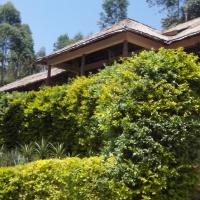Bwindi Forest Lodge, hotel in Buhoma