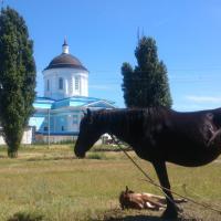 Дача на Дону, отель в городе Kochetovskaya